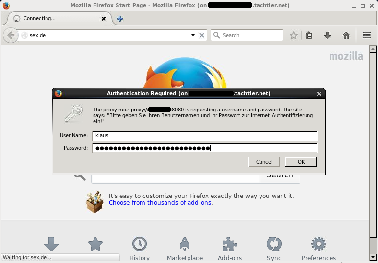 Mozilla Firefox Browser - Authentifizierungs-Dialog-Fenster